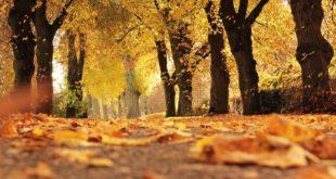 autunno defunti